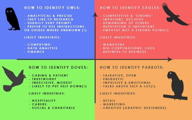 Disc Birds Identification