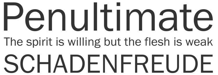 Franklin Gothic FS font freebies designers