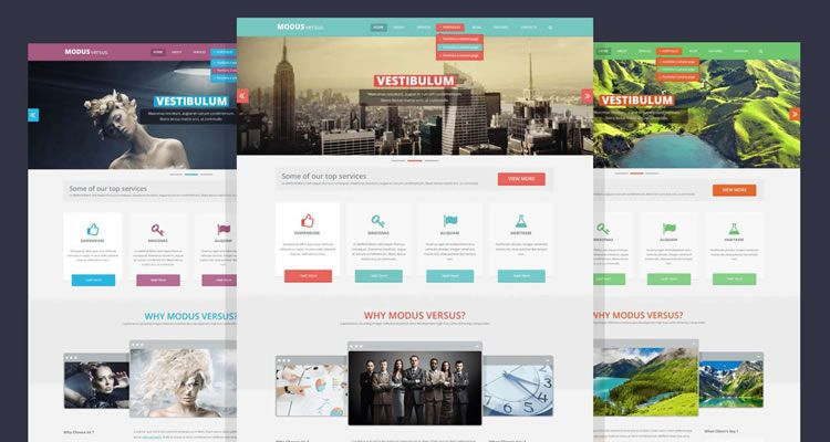 modus versus modern clean web template psd photoshop free - Free Web Templates