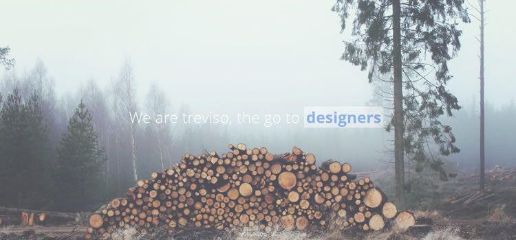 Treviso temiz portföy html css psd Duyarlı şablon web-tasarım ücretsiz