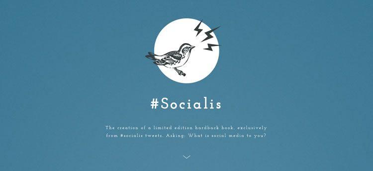 Socialis modern minimal design web site inspiration example