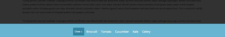 Slide  Bottom Menu css3 transition app-style menu navigation