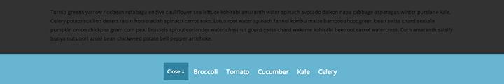 Push Menu Bottom css3 transition app-style menu navigation