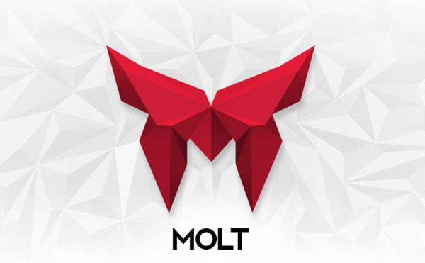 Molt Logotype stationery Design identity