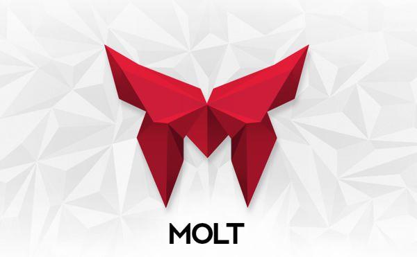 Molt Logotype stationery Design identity