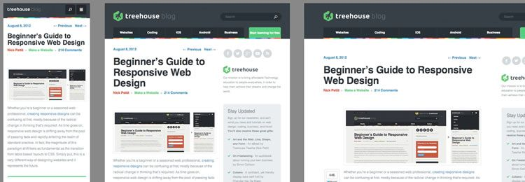 2014 Guide to Responsive Web Design