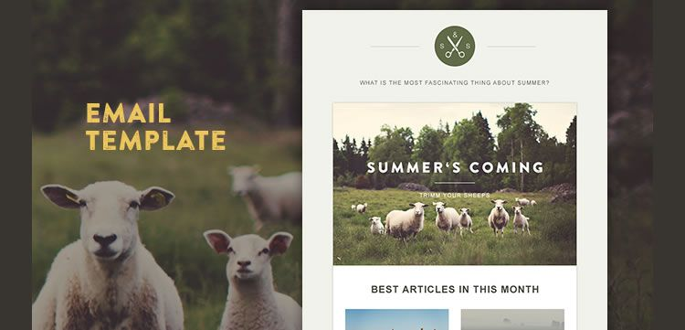 Free Responsive Email And Newsletter Templates - Mailchimp psd template