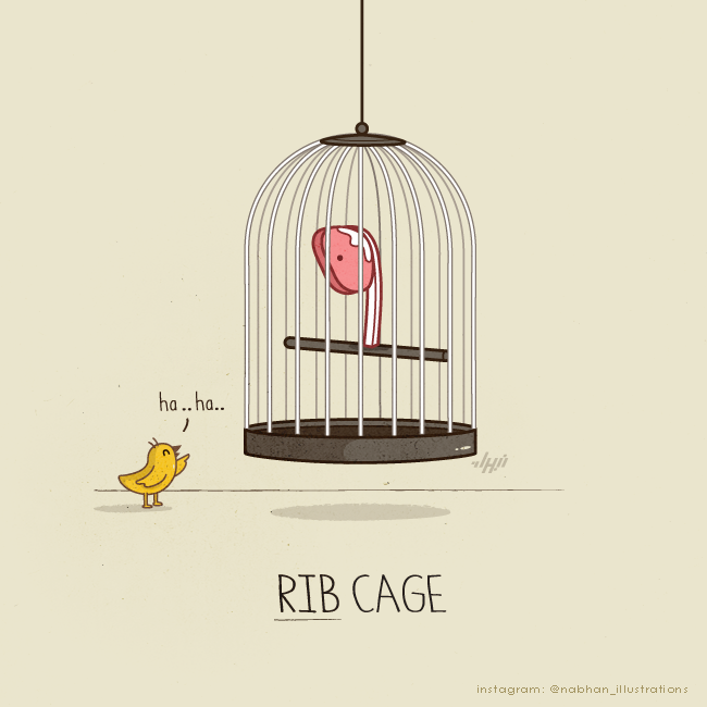 hilarious illustration series Rib Cage