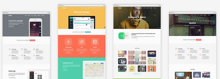 Beetle, a Responsive HTML Template