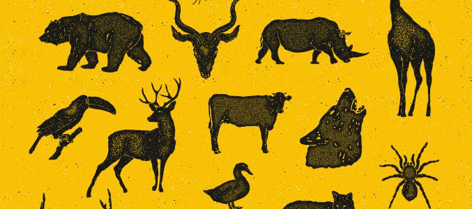 25 Hand-Drawn Vector Animal Pack
