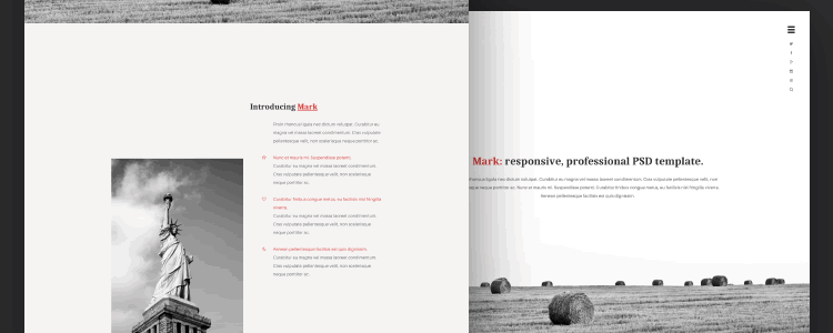 Photoshop PSD Free Mark Web Template