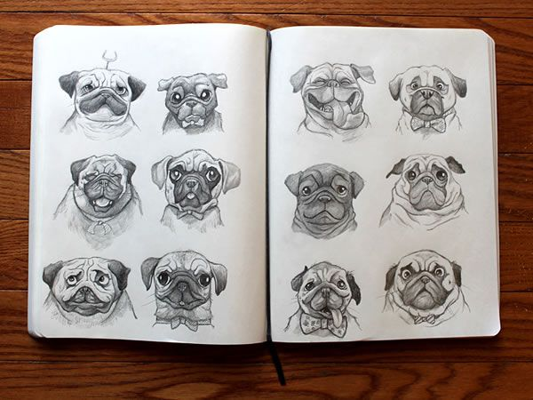 sketch pugs sketchbook