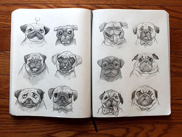 sketch pugs sketchbook