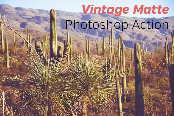 Vintage Matte Photoshop Action