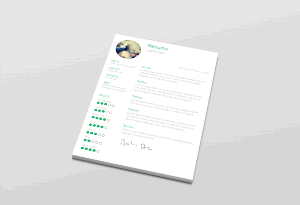 Clean Free Resume Template AI