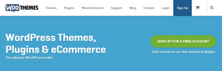 woothemes screeshot of homepage