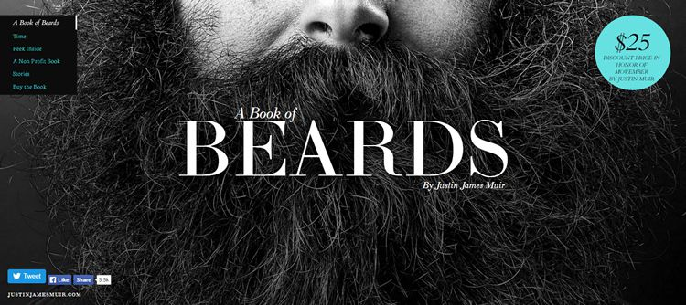 book of beards homepage photo