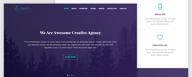 Photoshop PSD Free Agency Web Template PSD