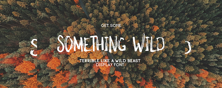 Free  handwritten font Something Wild