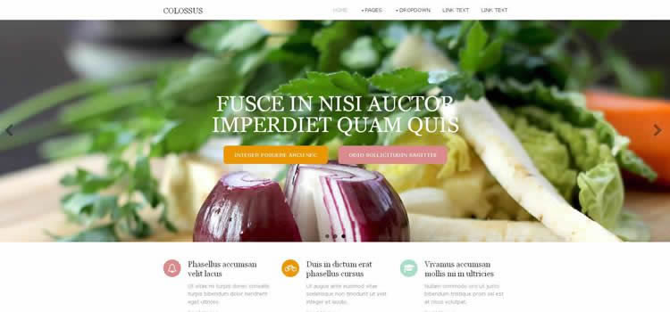Colossus temiz html5 ekran çözünürlüğü şablon web sitesi duyarlı