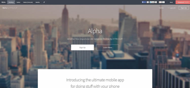alpha clean layout business html5 template website responsive