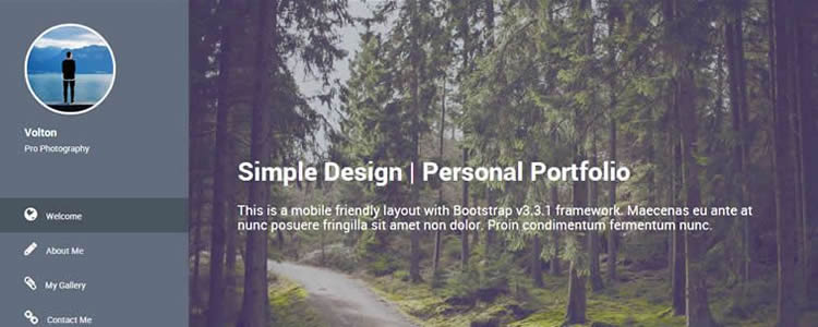Volton Freelance Designers Copywriter Vertical Menu Html5 Template Website Responsive