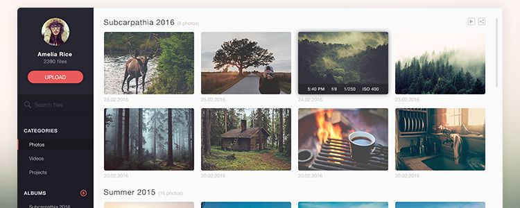 Photo Management Application Template Photoshop