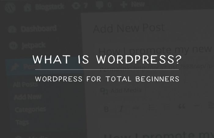 what-iswordpress-thumb