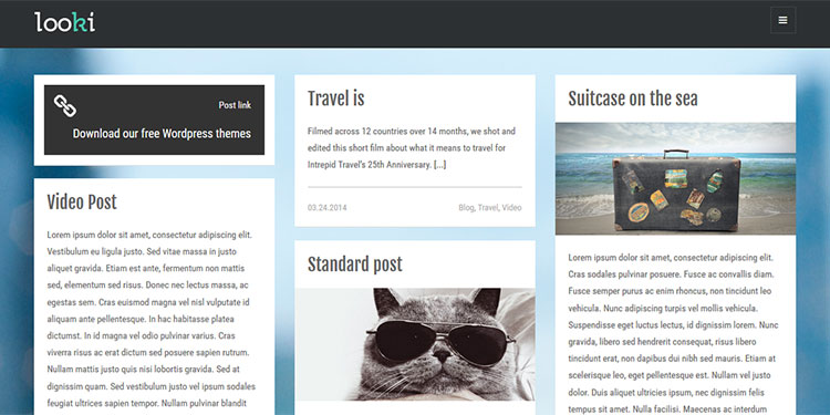 Looki WordPress Theme