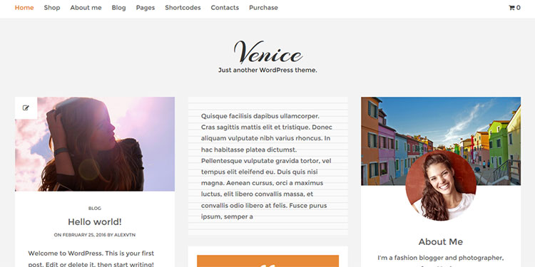 Venice WordPress Theme