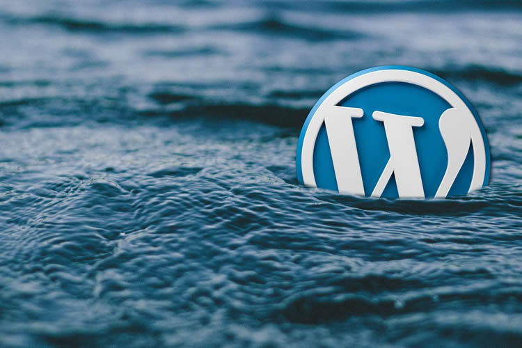 wordpress-search-thumb