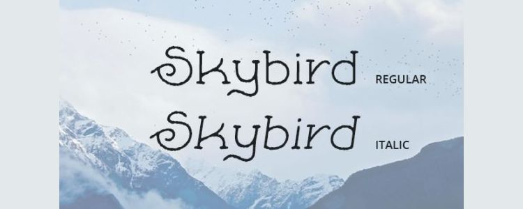 Skybird Rough Serif designer monthly free resources font typeface