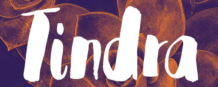 Tindra designer monthly free resources font typeface