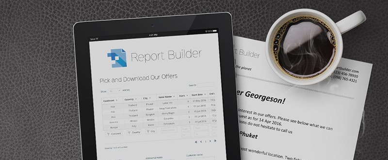 Report Builder automates WordPress site documentation