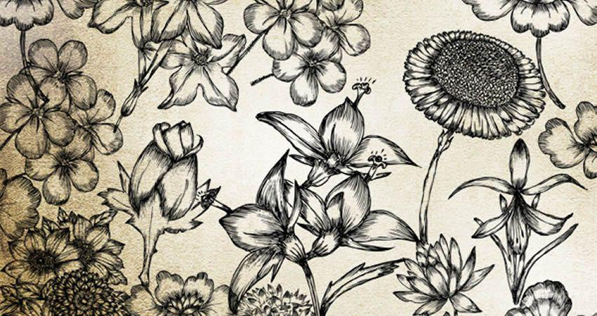 Hand Drawn Flowers vector template free illustrator