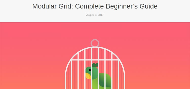 Modular Grid: Complete Beginner's Guide