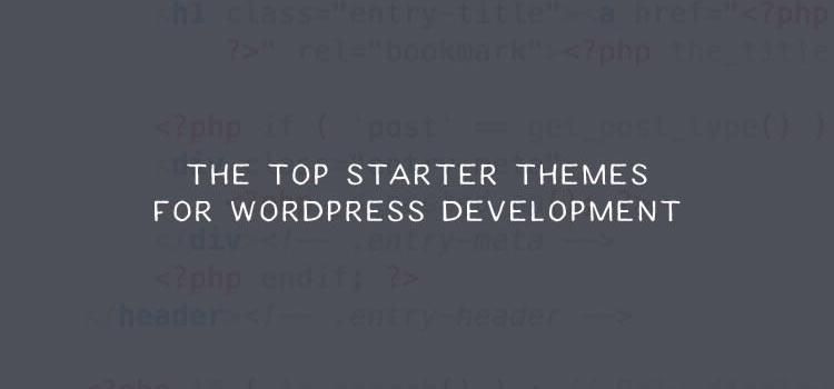 The Top Starter Themes for WordPress Development