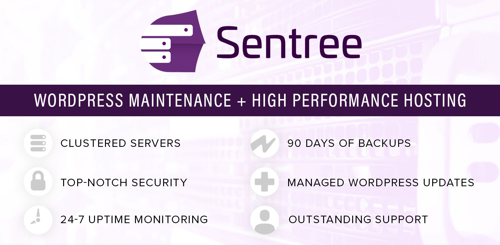 Sentree Managed Hosting with WordPress Maintenance