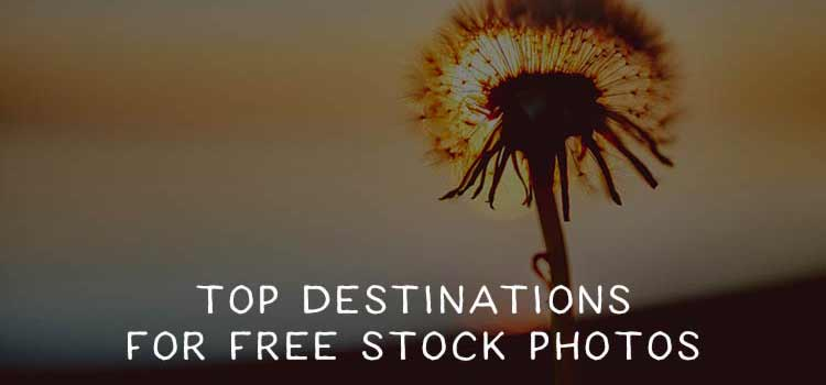 The Top Destinations for Free Stock Photos