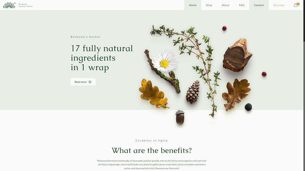 Herbal Three Ways to Keep Your Web Design Clients Happy Next Year - be theme 12 - Three Ways to Keep Your Web Design Clients Happy Next Year