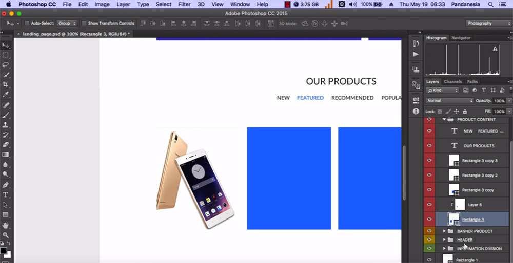 Design an ecommerce mockup