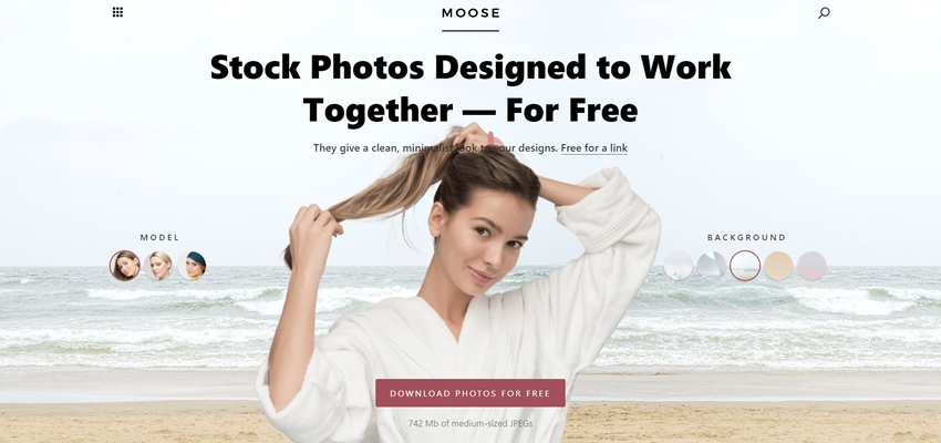 Moose Free Stock Photos