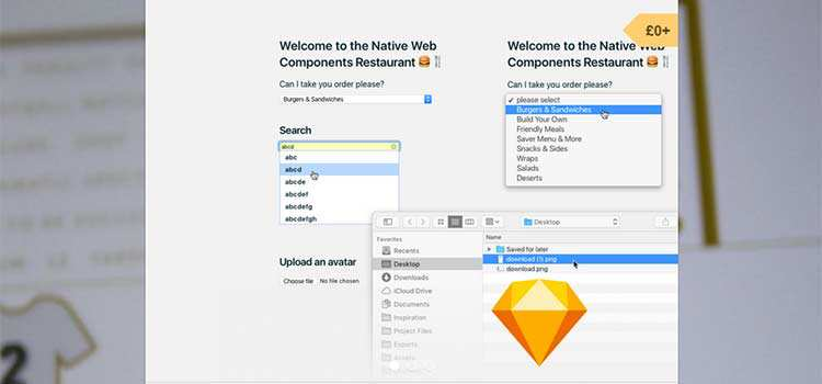 Sketch Library - Web Components
