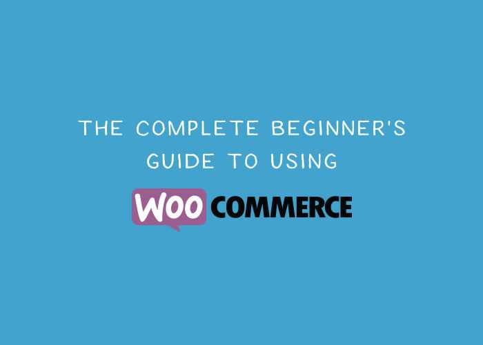 A Beginner's Guide to Using WooCommerce