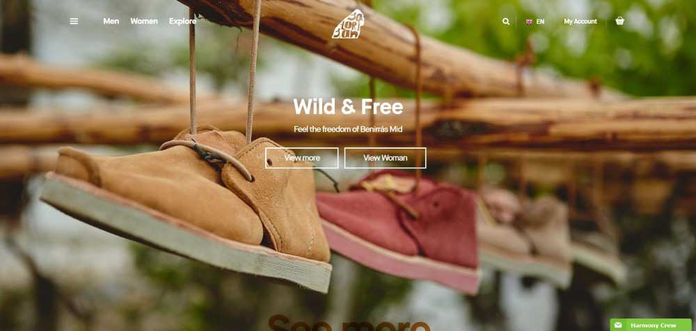 Satorisan ecommerce web design inspiration user interface shop