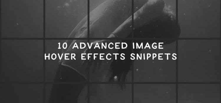 10 Advanced Image Hover Effects Snippets