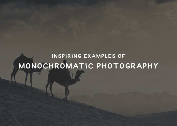 25 Inspiring Examples of Monochromatic Photography