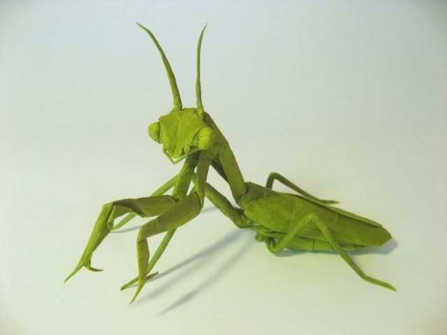 papercraft inspiration example Praying Mantis (female)