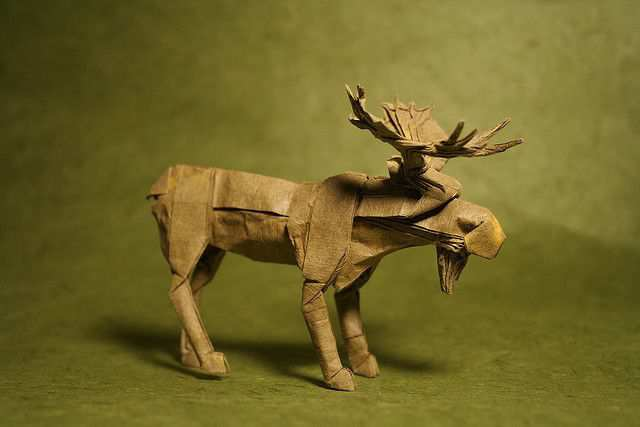 papercraft inspiration example Bull Moose