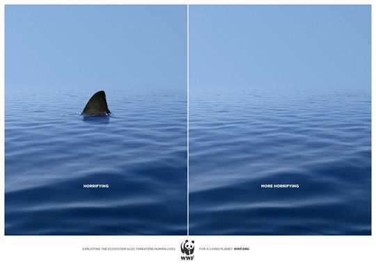 Print Ad - Disappearing Shark